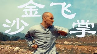 Feinting & Provoking in Shaolin Tongbei Quan