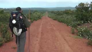 Vía de la Plata 2011 (7): Riego del Camino - Tábara - Calzadilla de Tera