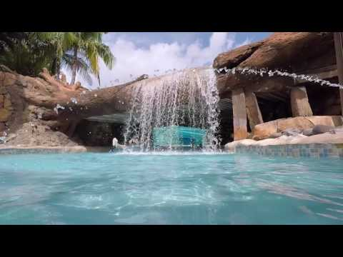 SeaWorld Aquatica Orlando Water Park 2017 Tour and Overview | Orlando Florida