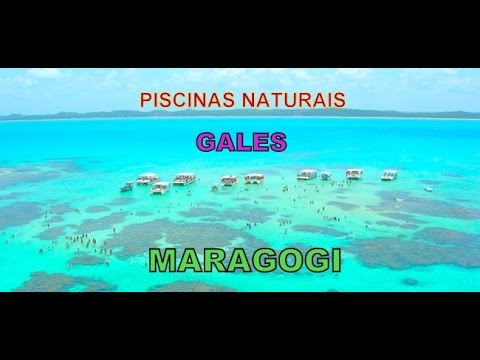 Maragogi 2017 piscinas naturales gales youtube for Piscinas naturales cercedilla 2017