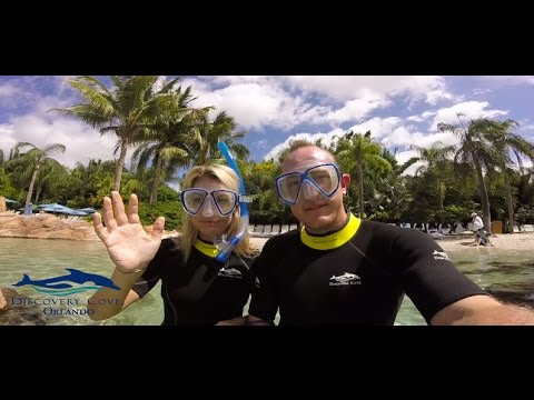 Everything you can do @ Discovery Cove Orlando Florida  - VLOG Video