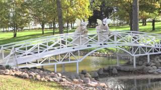 видео Международный Ландшафтный Форум «Зеленая стрела» в Санкт-Петербурге.