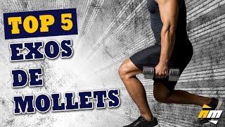 Top 5 des exercices de mollets - Muscler les mollets par All musculation