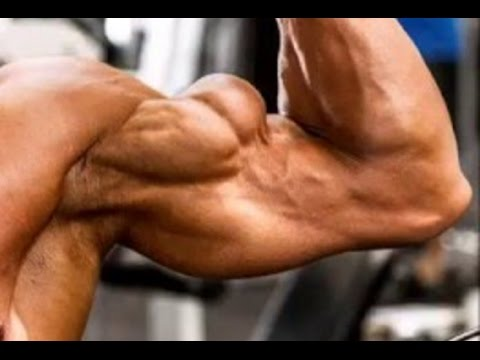 The Top 5 Most Ripped Biceps Ever