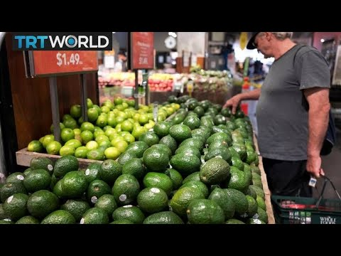 Avocado Boom: Demand grows for South Africa's green gold