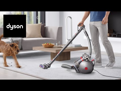 The Dyson Cinetic™