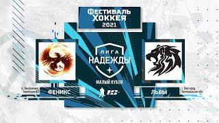 Феникс (Николаевка) - Львы (Белгород) | Лига Надежды. Малый Кубок (15.05.21)