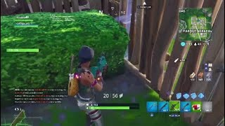 FORTNITE DOUBLE 15KILSS!!! PLAYING WITH THE SKIN SPECIALIST IN SPARKLES
