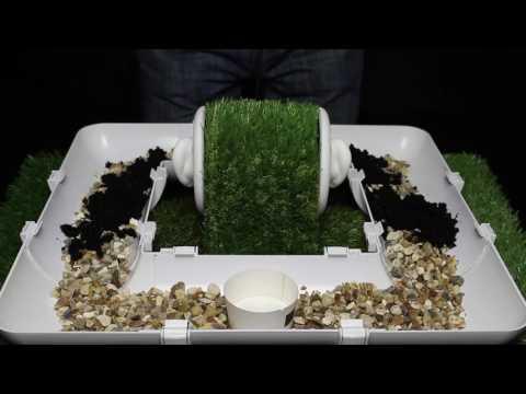ASMR 3Dio Gutter Garden Assortment. Stones, Soil, Water, Plant, Cutting, Latex Gloves (No Talking)
