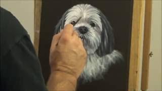 "How to paint Dog Portraits - Shih Tzu ""Ozzie"""