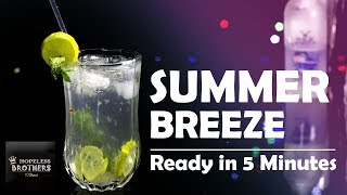 Summer Breeze Cocktail Vodka | Easy Magic Moment Vodka Cocktail