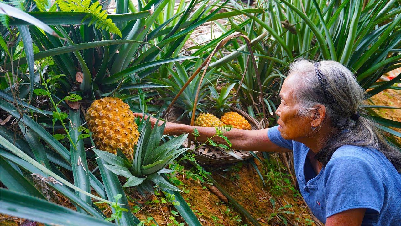 原生態菠蘿鴨做法,學會這幾步,酸甜開胃,比外面賣的還好吃|Guangxi grandmother, making Chinese food with fruit pineapple|广西美食 玉林阿婆
