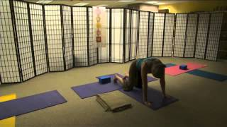 Relaxing Cat/Dog Yoga Sequence