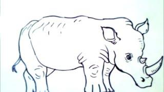 como dibujar un rinoceronte paso a paso   como dibujar un rinoceronte