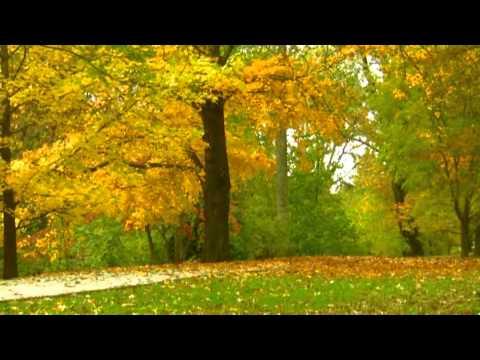 Tinavie -  Autumn Song(S.V 2010)
