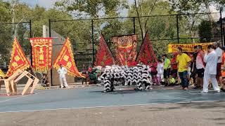 New York NYC Múa Lân KUNG FU +  Lion Dance 2019