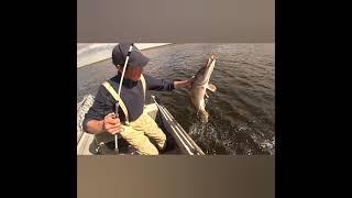 Рыбалка на щуку июль 2021