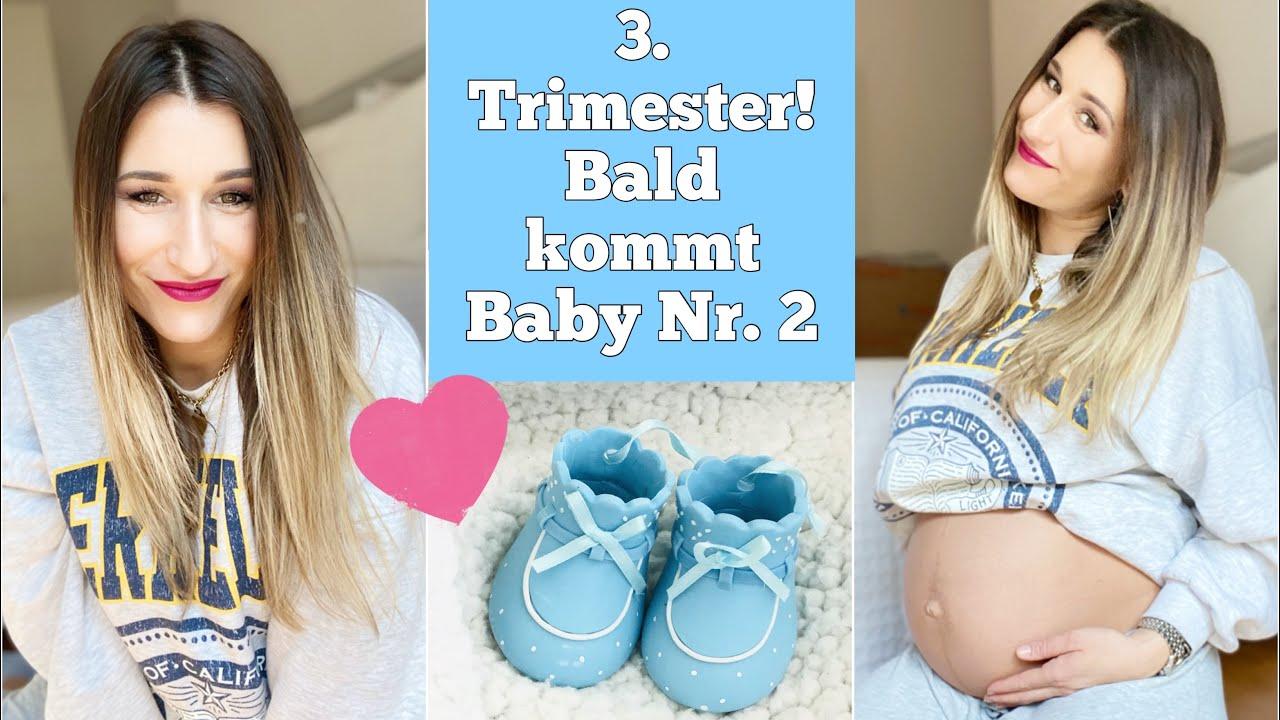 3. UPDATE   SSW 26-37   Noch 3 Wochen bis zur Geburt