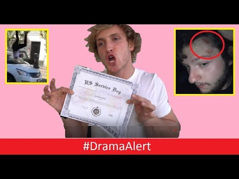 Thumbnail: Logan Paul EXPOSED! #DramaAlert YouTuber Hit by CAR! (FOOTAGE) NetNobody ATTACKED!