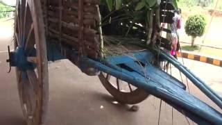How Bullock Cart is designed ?