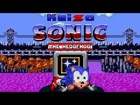 Kaizo Sonic The Hedgehog - The RAGE game - Walkthrough