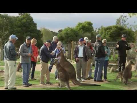 Accessible Gippsland - MARU Koala Park Tourism Excellence Case Study