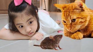 마우스 장난감? 서은이와 엄마의 마우스 무선장난감 코딩펫 이야기 Mouse Wireless Toy and Coding Pet