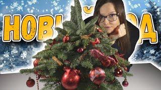 Мини-ёлка, Рождественское настроение Кисимяки и конкурс