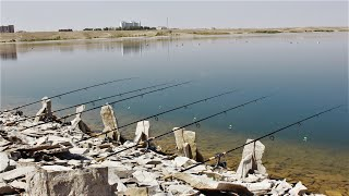 РУКИ УСТАЛИ ИХ ТАСКАТЬ Вот это рыбалка Этот берег заставил нас ПОПОТЕТЬ ЗАДУМАЙТЕСЬ