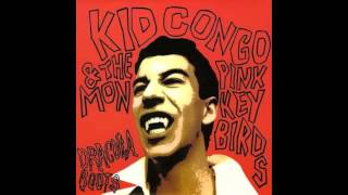 Kid Congo & The Pink Monkey Birds - Late Night Scurry