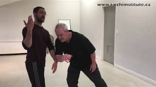 Cumulative Power in Martial arts and Life - Tai Chi Push Hands - workshops 2018