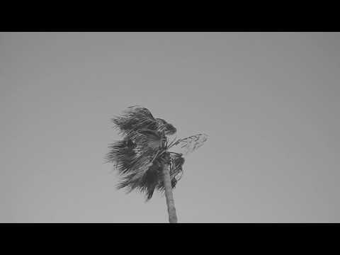 Hania Rani - Sun (Official Video) [Gondwana Records]