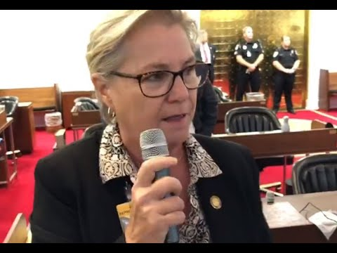 Rep. Deb Butler speaks out against veto override by NC House Republicans