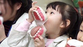[종합편] 라임의 한국잡월드 어린이체험관에 가다! 소방관*치과의사*과학수사대 직업체험