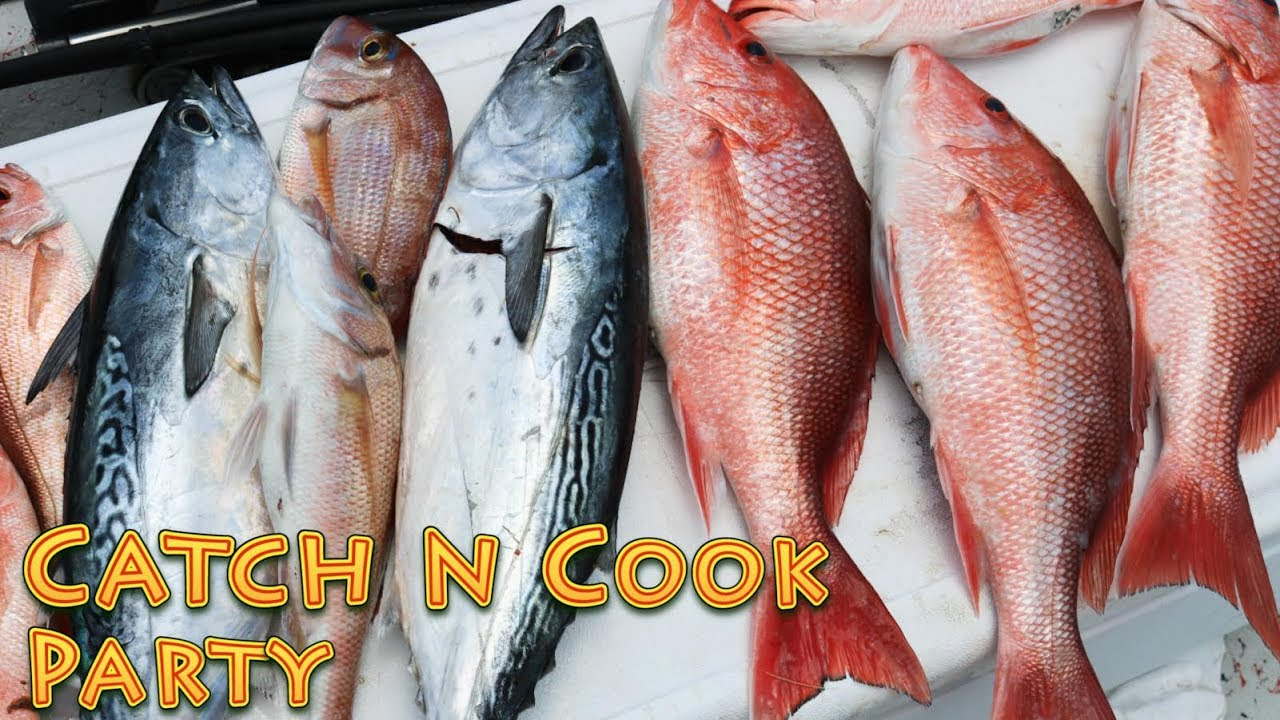 Catch and cook party 5 different species of fish youtube for Catch and cook fish