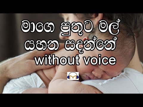 Mage Puthuta Mal Karaoke (without voice) මාගෙ පුතුට මල්