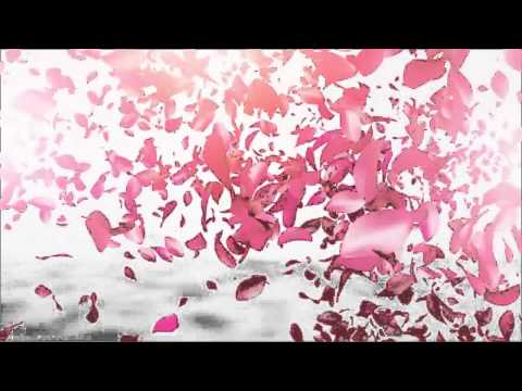 Blow up logo reveal by white-shade | videohive.