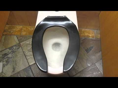 Canadian 1973 American Standard Afwall Toilet