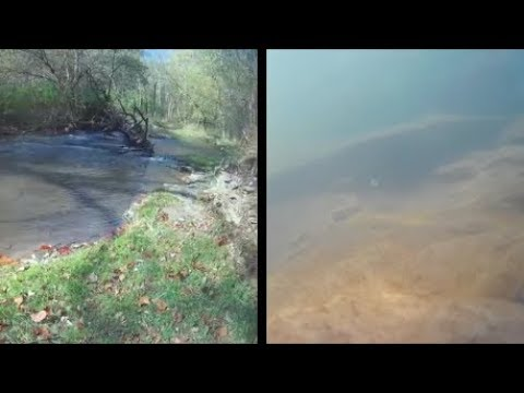 Underwater episode 32: Mitchell's Grove (NP) (site22/location2)