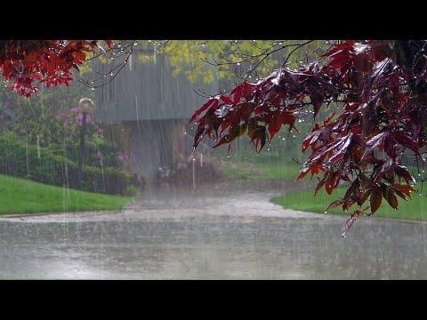 [White Noise] Dubai Rain Sound Relaxing For Deep Sleep. Increase Creativity, Stress Relief