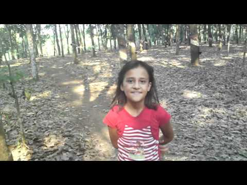 EN LA HULERA 2 2011