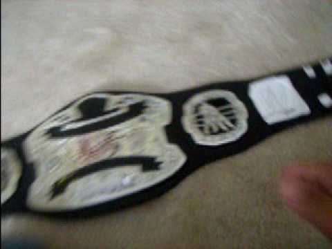 world tag team championship paper