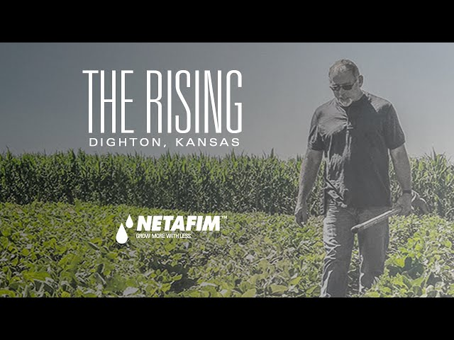 THE RISING