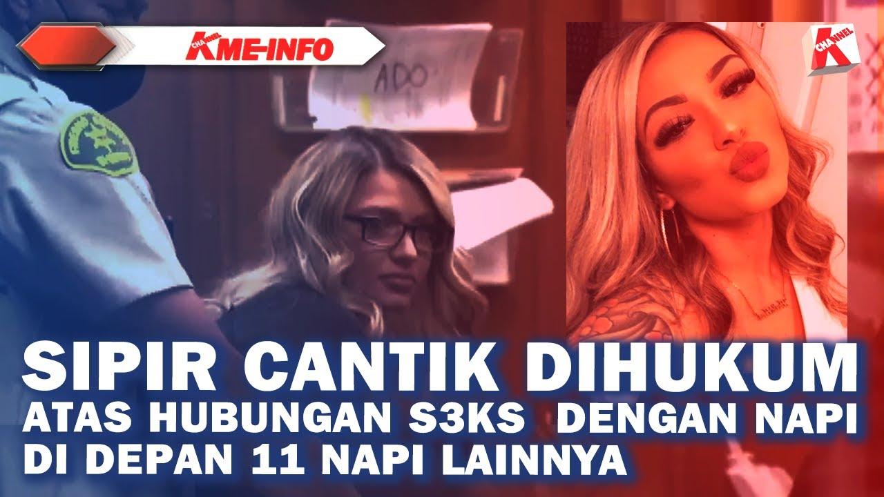 Download SIPIR CANTIK DIPENJARA KARENA KERAP BERHUBUNGN INTIIM DENGAN NAPI DISAKSIKAN 11 NAPI  LAIN