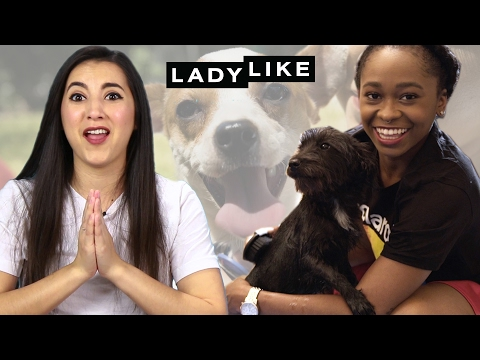 Thumbnail: We Fostered Rescue Dogs For Two Weeks • Ladylike