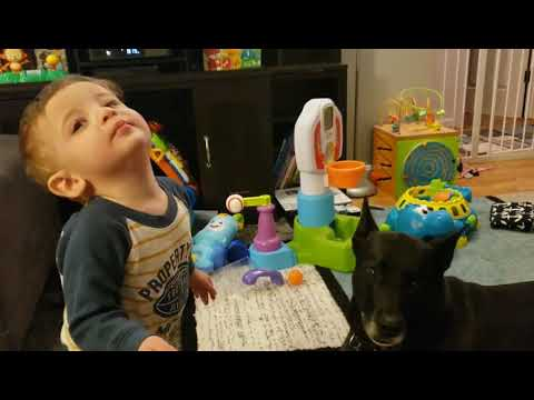 Jim Conner - Video: Baby and Dog Have a Howling Conversation