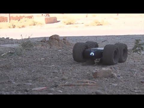 Метательная камера «Сфера» и робот «Скарабей» в Сирии