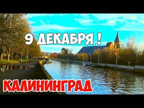 Калининград. 9 декабря 2019 / ПОГОДА / ЗИМА / анонс видео: работа и зарплата в Калининграде