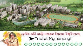 Welcome to Jatiya Kabi Kazi Nazrul Islam University(JKKNIU)