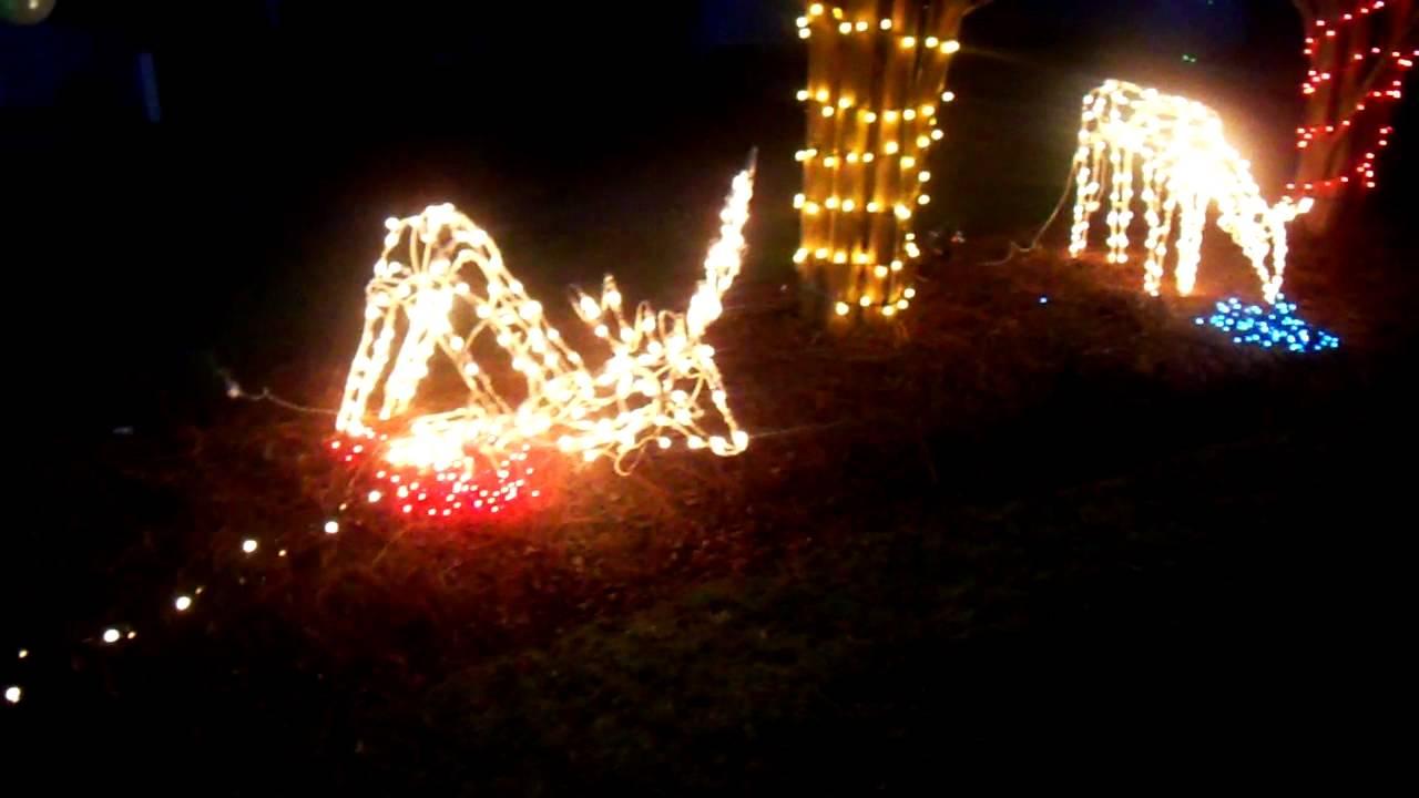 hunter shooting deer christmas lights youtube - Deer Christmas Lights